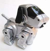 Mysterious Dog Robot